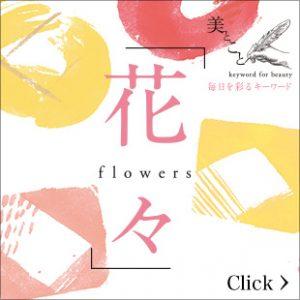 花々 flowers