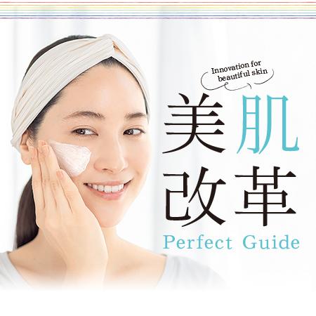 美肌改革 Perfect Guide